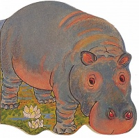 Cover image for Pocket Hippo