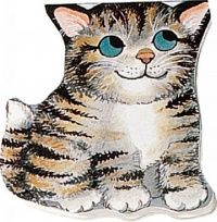 Cover image for Pocket Kitten
