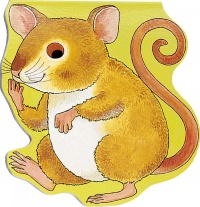 Cover image for Pocket Mouse
