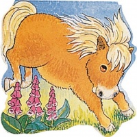 Cover image for Pocket Pony